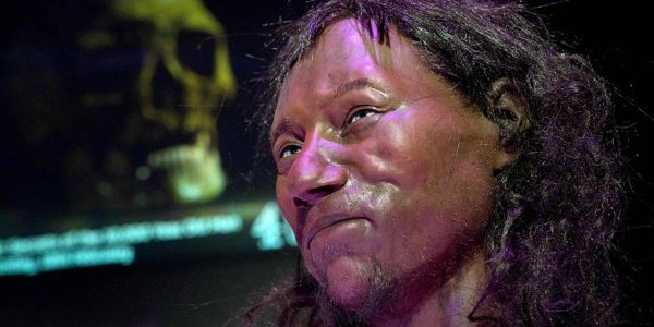 DNA tests reveal face of first modern Briton
