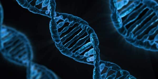 A new twist on the structure of DNA