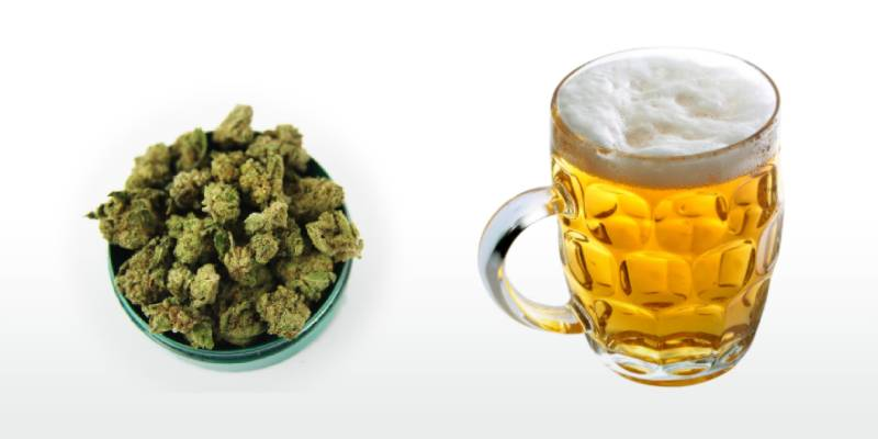 Which is worse: cannabis or alcohol?